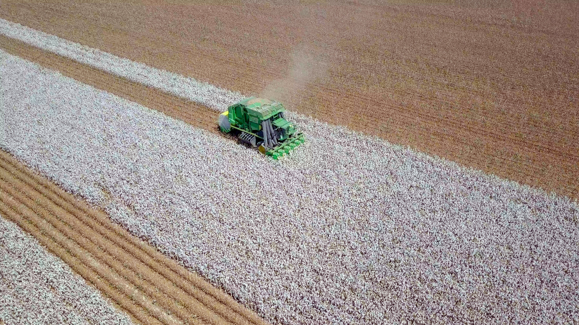 Cotton being harvested seen from the air