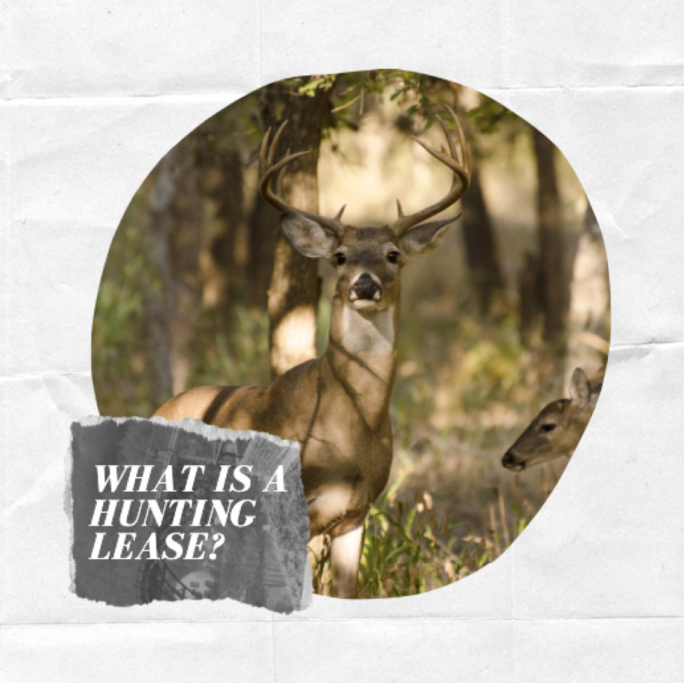 What is a hunting lease?